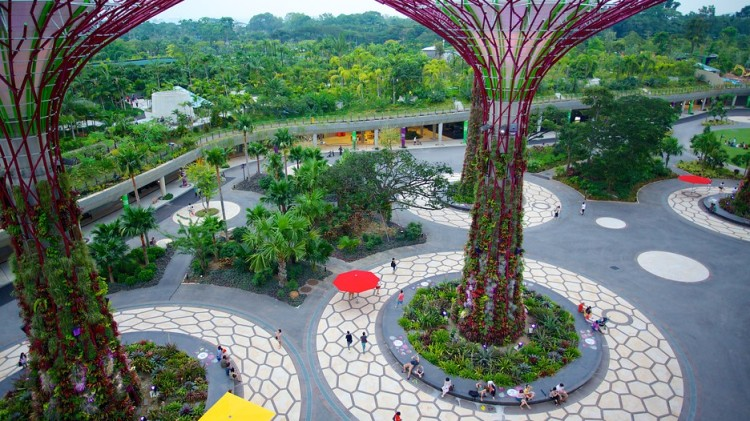 Singapore-Gardens-By-The-Bay-39524